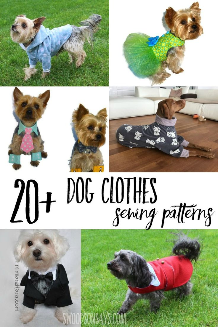 Cutest Paid Amp Free Printable Dog Clothes Patterns Sewing