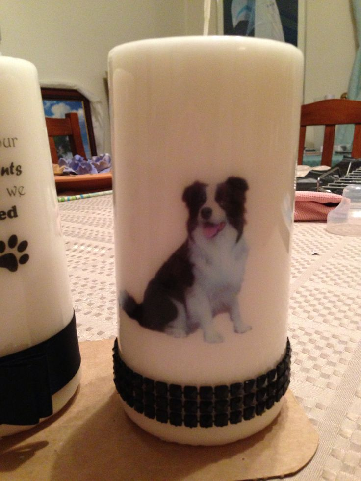 Back of Collie candle