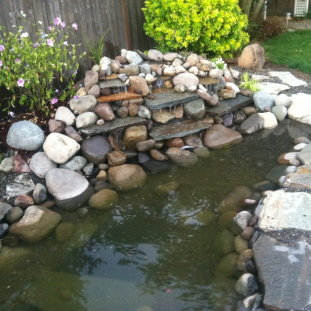 Backyard waterfall ponds and water gardens pinterest for Diy pond liner ideas