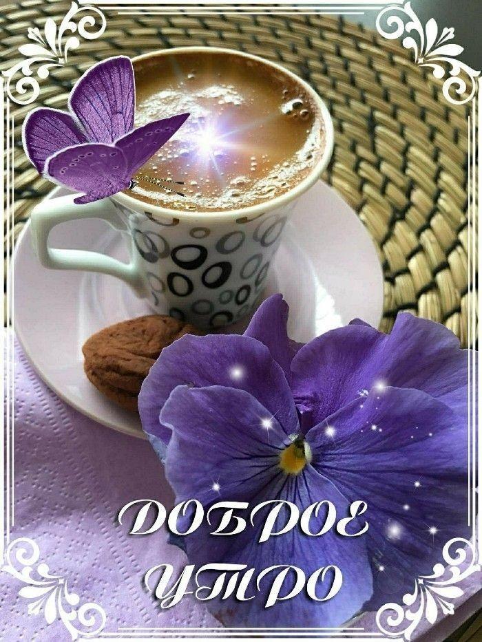 Доброго утра дня милый открытки, солнца