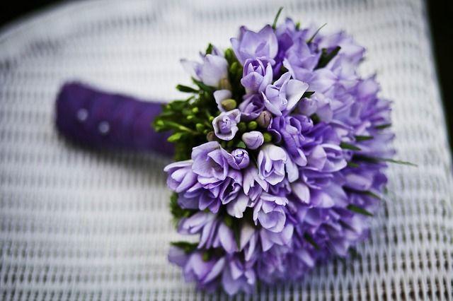 Expensive Flowers for Weddings http://www.bestforbride.com/bridal-shop/18/expensive-flowers-weddings/?utm_campaign=crowdfire&utm_content=crowdfire&utm_medium=social&utm_source=pinterest