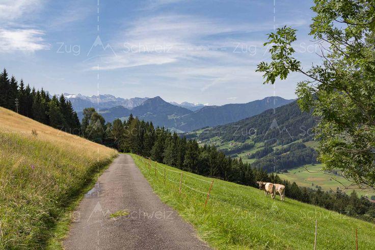 Panoramaweg - #Ägerital am #Ägerisee im Kanton #Zug in der Schweiz (Switzerland)