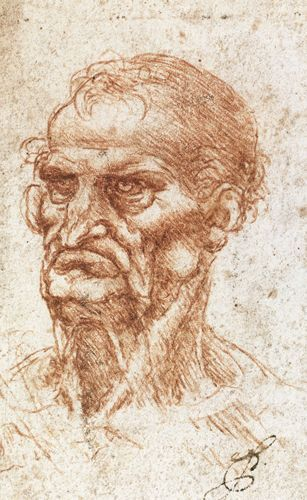 Studio di una testa caratteristica - Leonardo - Opere d'Arte su Tela - Listino prodotti - Digitalpix - Canvas - Art - Artist - Painting