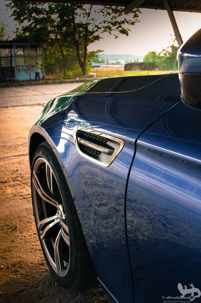 presenting the brand NEW BMW M5! - the shark vs. bait