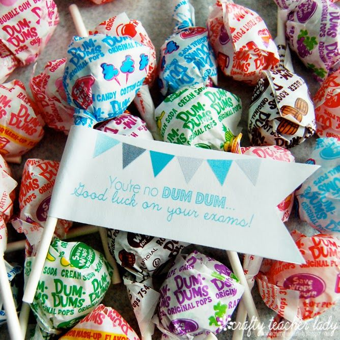 ... cute lollipop flags say 'You're no Dum Dum...Good luck on your exams