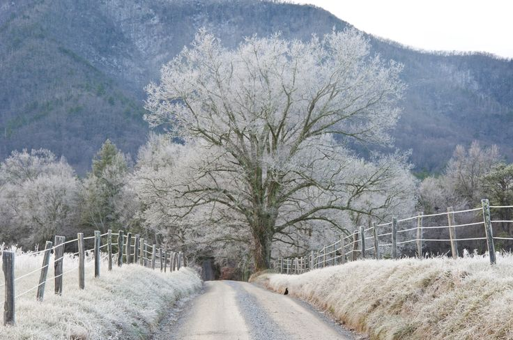 Cades Cove In The Winter Beautiful The Great Smoky
