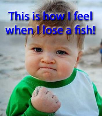 For more great fishing humor check out our Facebook page at https://www.facebook.com/CatsandCarp