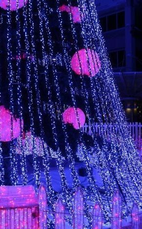 2015: Canberra, Australia breaks another World Record for Christmas lights.