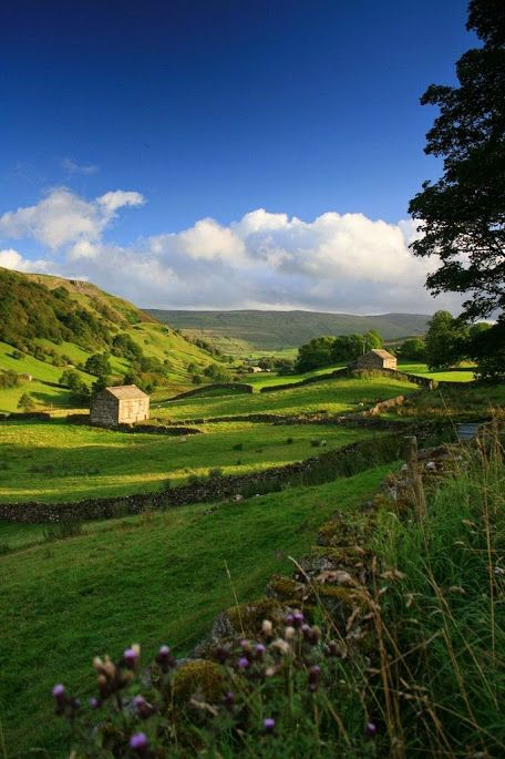 Круги G+– Сообщество– Google+ Северный Йоркшир, Англия  #красота #пейзаж #природа #photography #nature #amazing #new #pictures #beautiful #naturek #landscape #beauty