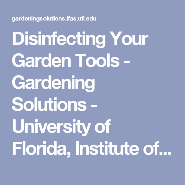 Disinfecting Your Garden Tools - Gardening Solutions - University of Florida, Institute of Food and Agricultural Sciences