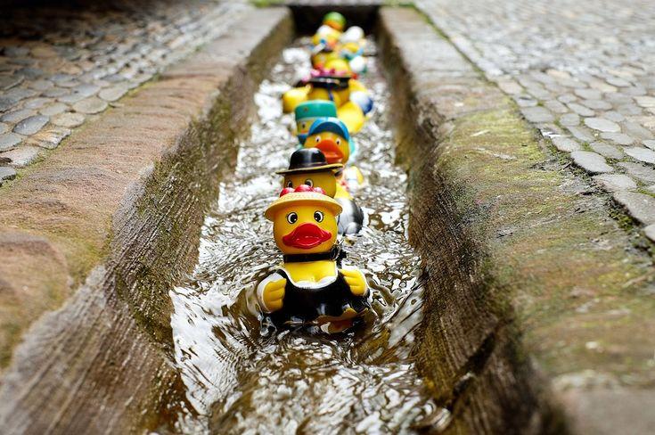 Rubber Duck, Bad Eend, Speelgoed, Kostuum, Fun Baden