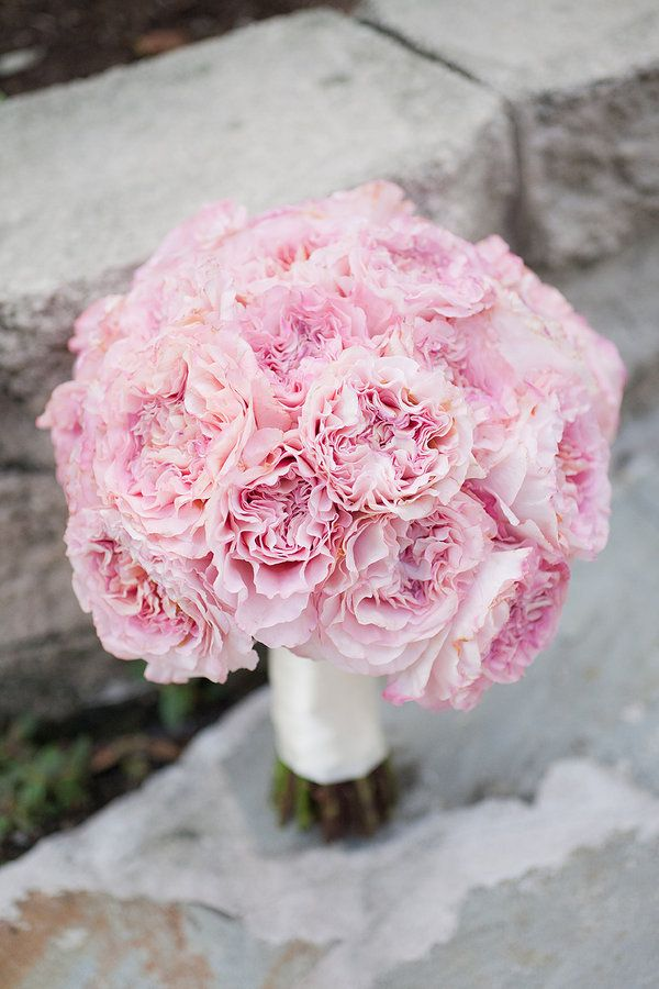 Carnation bouquet...makes a simple carnation look amazing