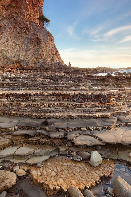 Up on the shelf, Abalone Cove Conservation Area in California, USA (by PaulRojas).