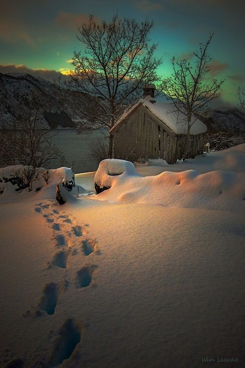 Footsteps in the Snow by wimlassche , love the light in this scene .