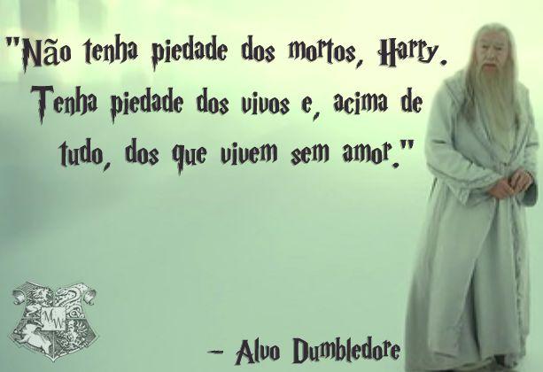 Confiras as melhores e mais marcantes mensagens, pensamentos, legendas e frases de Harry Potter.