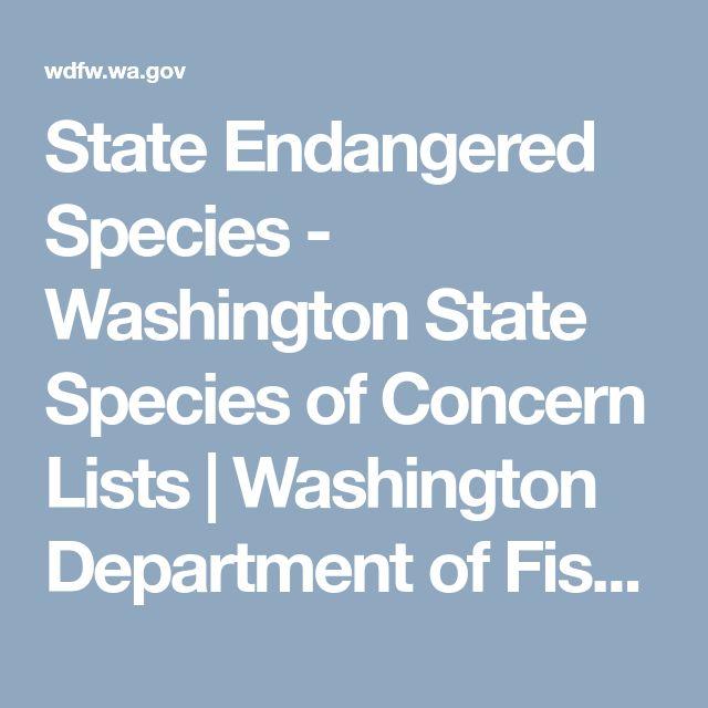 State Endangered Species - Washington State Species of Concern Lists | Washington Department of Fish & Wildlife