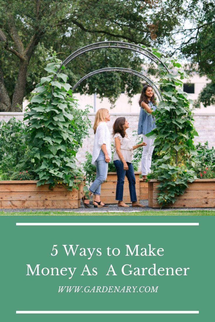 Pin On Making Money Homesteading Backyard gardening for profit