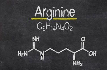 """Arginine : un acide aminé """"semi-essentiel"""" au corps humain"""