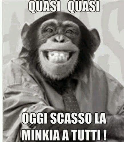 Oltre 25 fantastiche idee su scimmie divertenti su for Vignette simpatiche buongiorno