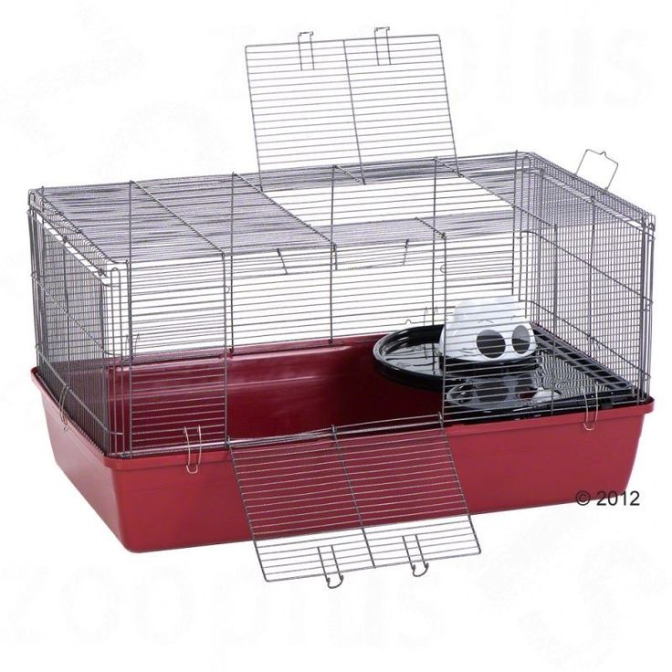 Alaska Hamster Cage Gerbils Small Pet Animals Love Gift Spacious Brand New  http://www.ebay.co.uk/itm/Alaska-Hamster-Cage-Gerbils-Small-Pet-Animals-Love-Gift-Spacious-Brand-New-/252322173182?hash=item3abf92d0fe:g:yNoAAOSwyjBW6TWj
