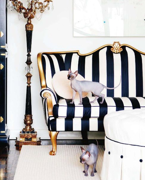 black n white chic: Living Rooms, Couch, Hairless Cat, Black And White, White Rooms, Black White, Gold Accent, Sofas, White Stripes