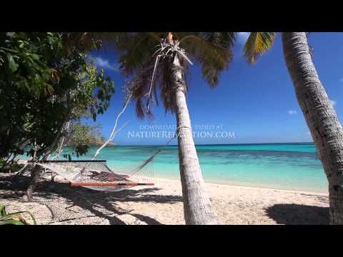 """Islands of Paradise"" Fiji 1 HR (Nature Sounds) Tropical Relaxation Video 1080p - YouTube"