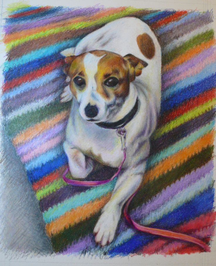 """Daisy"" commission, coloured pencil, A5 size approx SOLD"