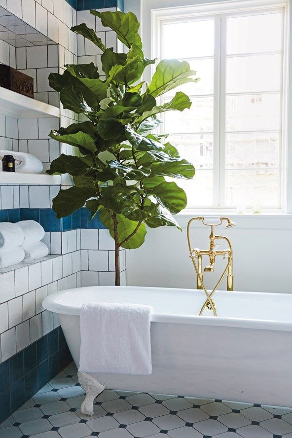 Blue and white tiling, and an indoor plant hanging over a large freestanding bath with bronze taps in a bathroom at Hotel Emma in San Antonio, Texas