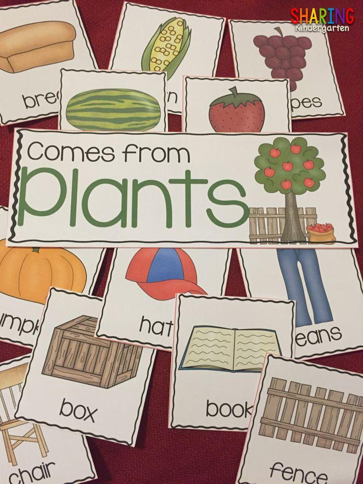 https://www.teacherspayteachers.com/Product/Plants-Print-Play-Pack-1804999