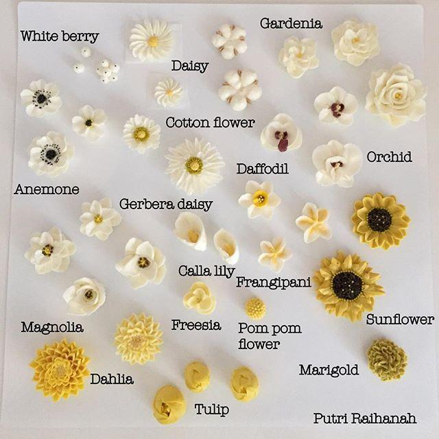 Edible Flowers, Cake Flowers, Sugar Flowers, Frosting Flowers, Buttercream  Flowers Tutorial, Flower Parts, Flower Cookies, Cupcake Decorations, ...