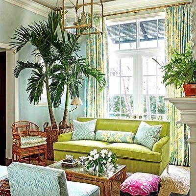 Lush Living with Tropical Decor and Large Palm.