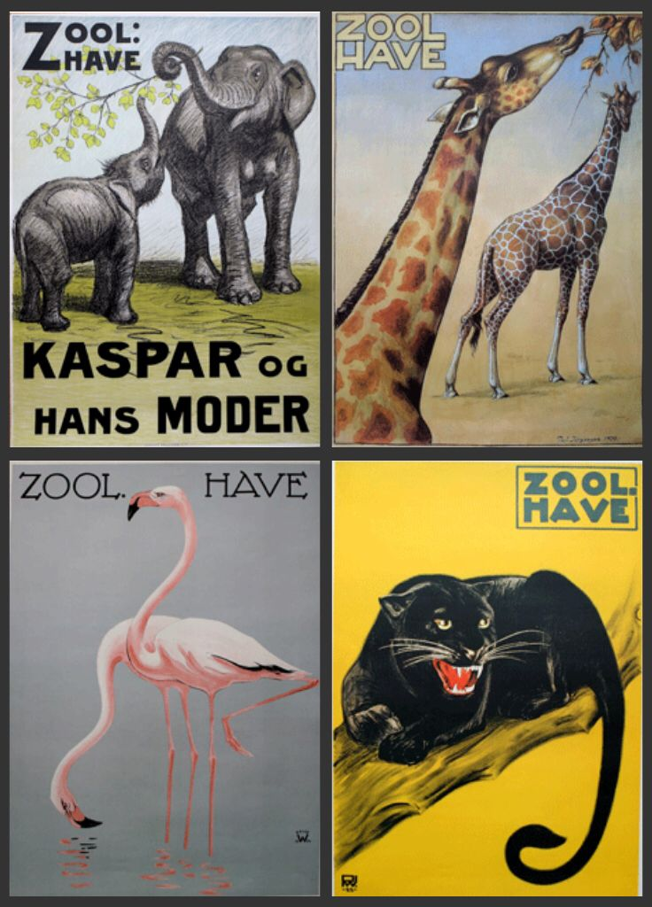 københavn zoo job