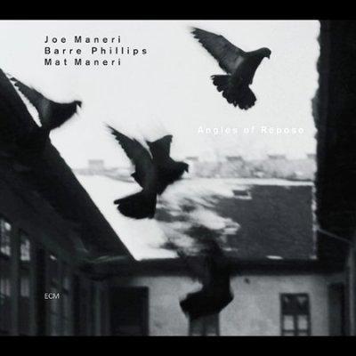 J Maneri/B Phillips - Angles Of Repose