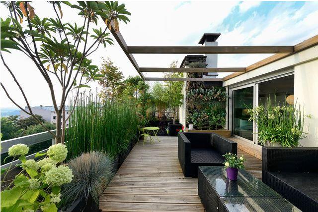 Terrasse outdoor wood plants