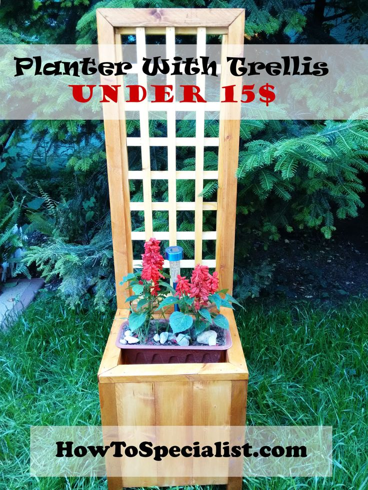 How to build a planter with trellis   HowToSpecialist - How to Build, Step by Step DIY Plans