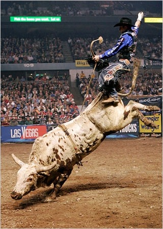 bull riding - check it out!  He's still holding the rope!  WOW!