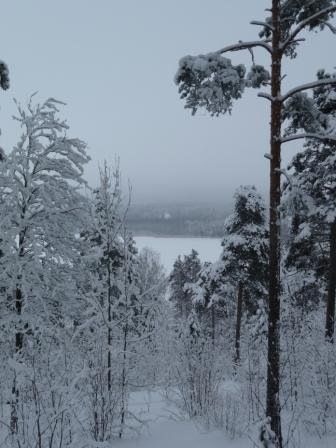 A winterday in Kangasala, Finland