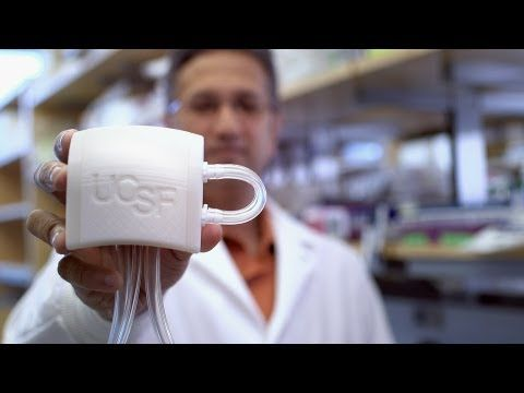 BRAND NEW UPDATE: Artificial Kidney Holds Promise for those Afflicted with ESRD — KidneyBuzz