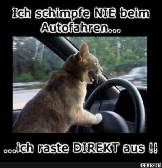 Ich schimpfe nie beim Autofahren..
