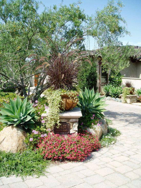 Alison S Gardens Mediterranean Garden: 125 Best Mediterranean Gardens Images On Pinterest