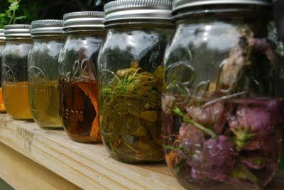 Vodka tinctures, which can be made with all herbs. Some ideas to get you started are lemon balm, mint, lavender, and rosemary.