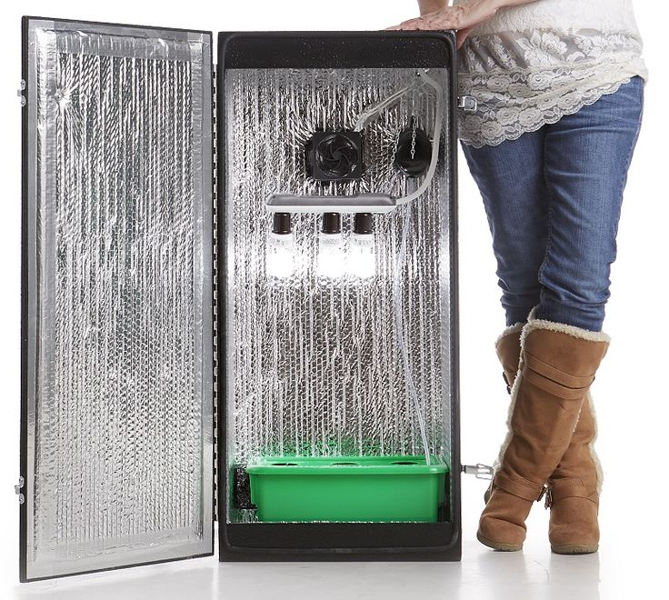 Grow your own plants (seed to harvest) inside the Cash Crop grow box. & 32 best Grow Boxes images on Pinterest | Grow boxes Aquaponics ...