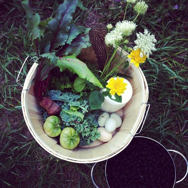 basket of vegetables and flowers