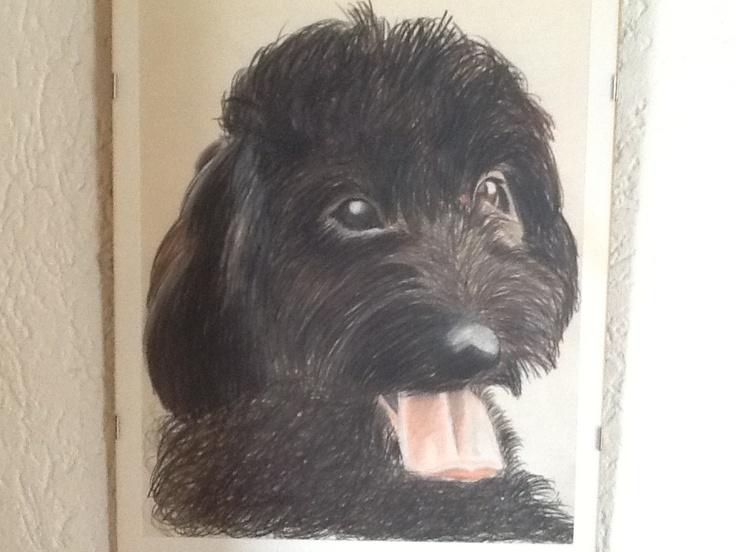Bobby een van onze vorige honden, getekend door broer Jan.