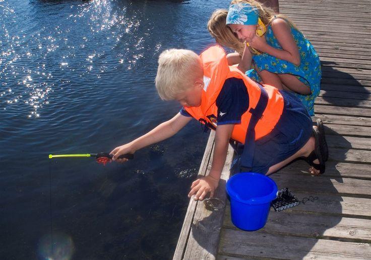Fra brygga er det muligheter for at barna kan fiske krabber, og dette er en utrolig populær aktivitet for de minste. Barna sitter i timesvis og fanger krabber, og  for den med tid og tålmodighet er det muligheter for å få mange og store krabber.