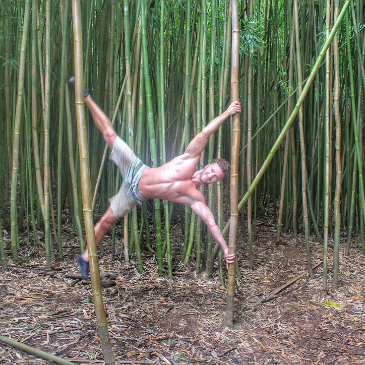 Everyday is a new adventure! #travel #hana #hawaii #maui #banbooforest #nature #naturelovers #acroyoga #yoga #acrobalance #fitness #fitnesslifestyle #bodybuilding #fun #happy #happiness #fitnessmotivation #passion #lifestyle #happylife #yogaeverywhere