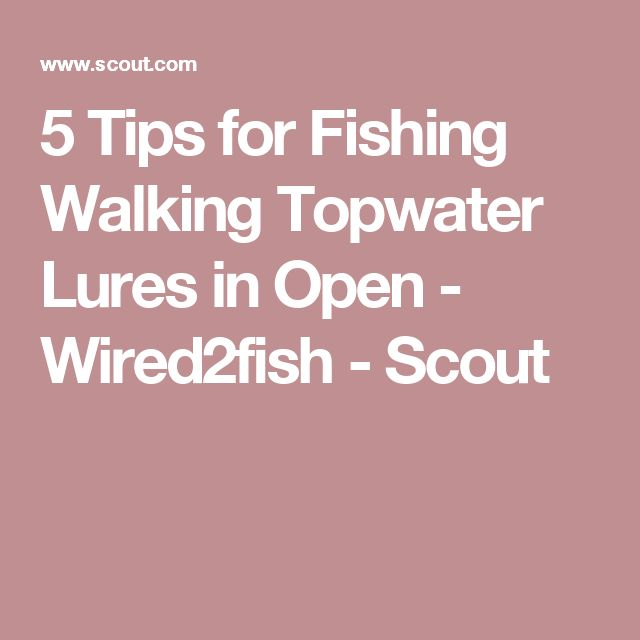 5 Tips for Fishing Walking Topwater Lures in Open - Wired2fish - Scout