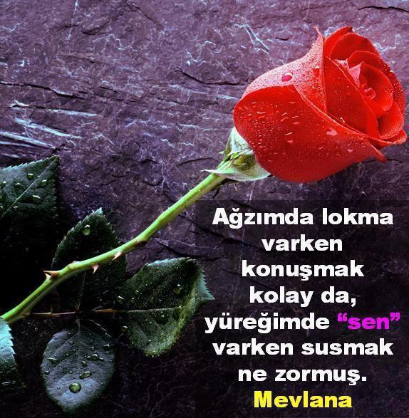 En kaliteli Aşk Sözleri sayfası » http://www.enguzelsozunuz.com