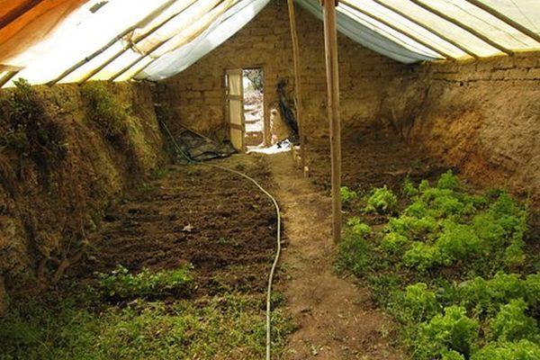 Ieftine șieficiente, serele subterane sau îngropate sunt o modalitate foarte bună pentru cultivatori de aproduce legume pe tot parcursul anului și mai ales în lunile de iarnă. Cu o investiț