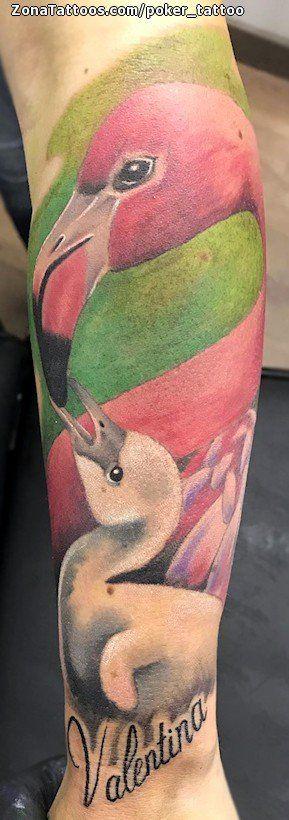 Tatuaje hecho por Ismael Hidalgo de Barcelona (España). Si quieres ponerte en contacto con él para un tatuaje/diseño o ver más trabajos suyos visita su perfil: https://www.zonatattoos.com/poker_tattoo  Si quieres ver más tatuajes de flamencos visita este otro enlace: https://www.zonatattoos.com/tag/1753/tatuajes-de-flamencos  Más sobre la foto: https://www.zonatattoos.com/tatuaje.php?tatuaje=112210